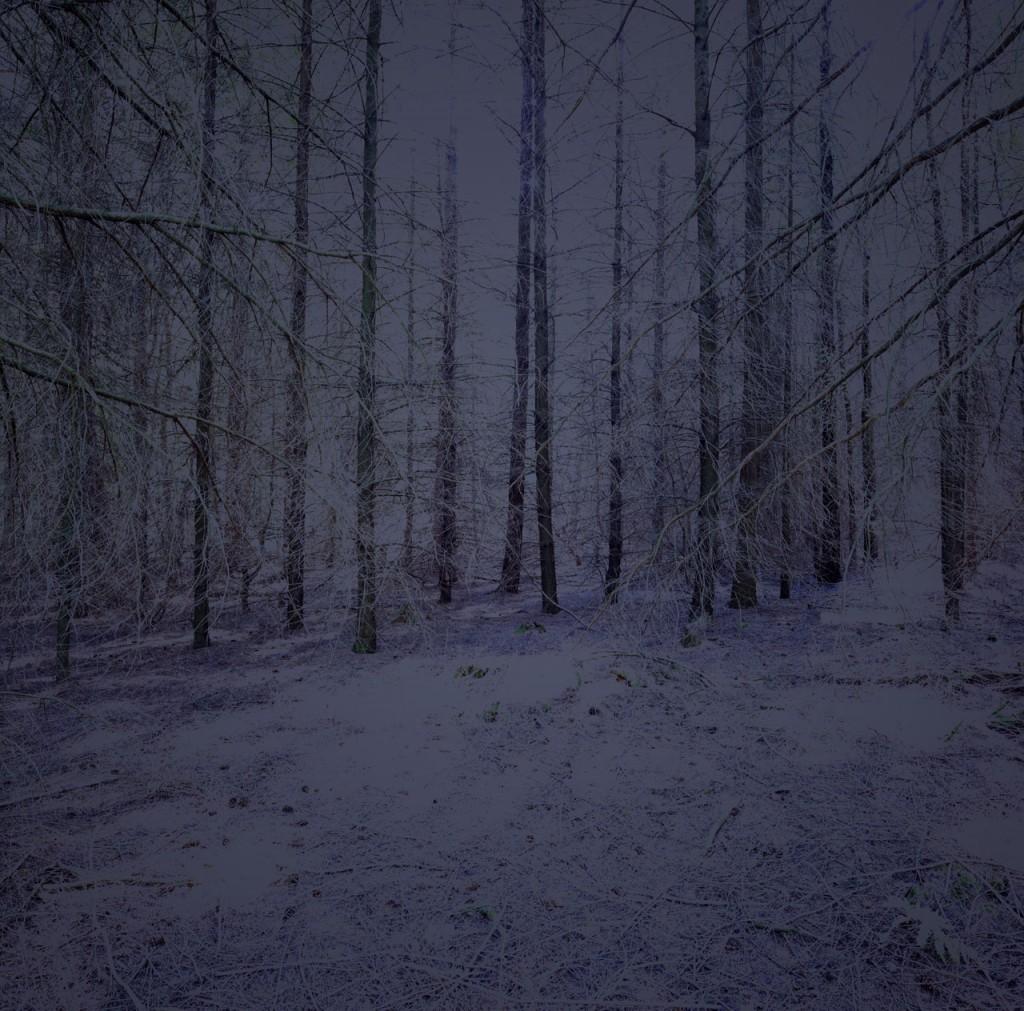 Blackwood_04_Gregor_Schuster