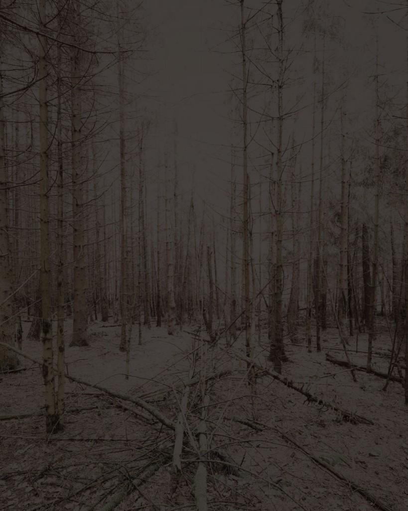 Blackwood_08_Gregor_Schuster