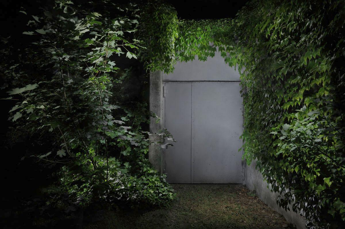 Garden#2