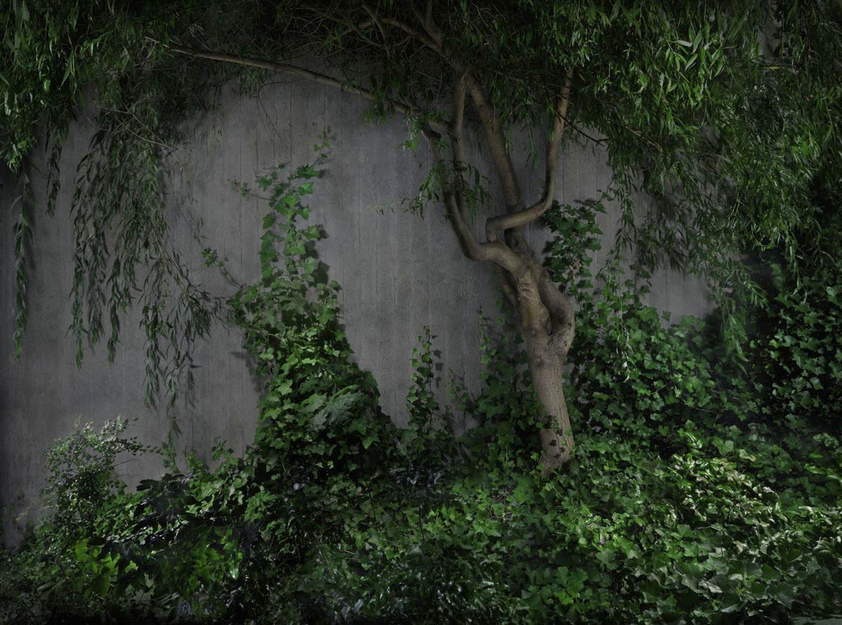 Garden#3