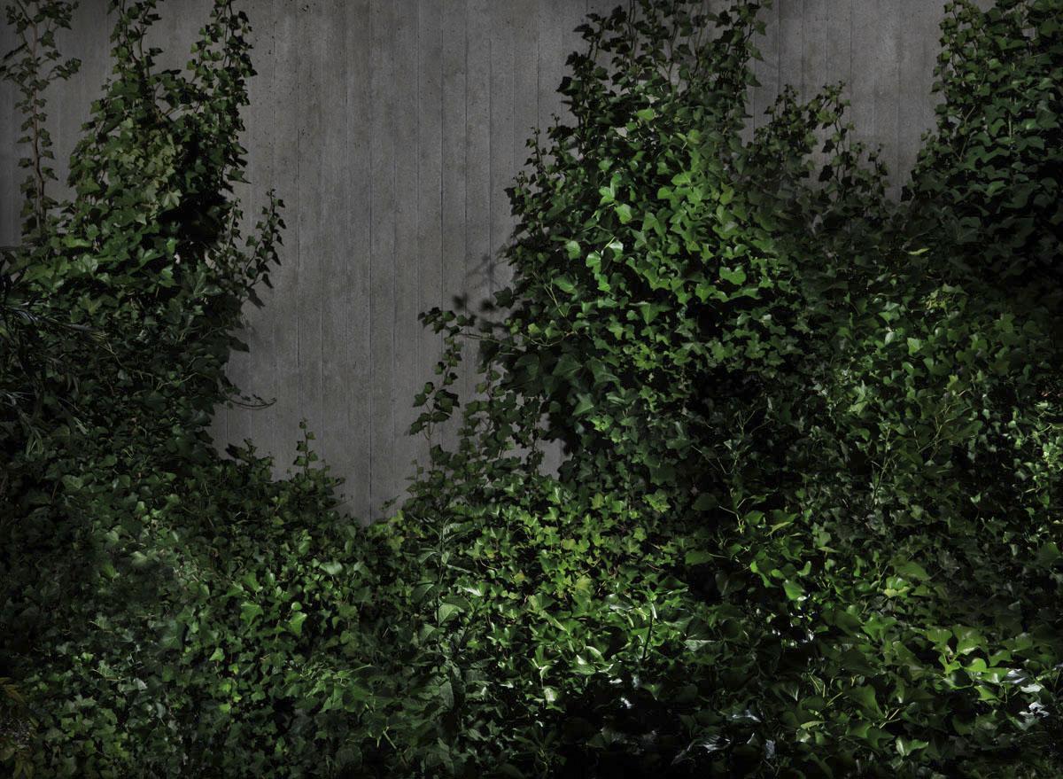 Garden#4