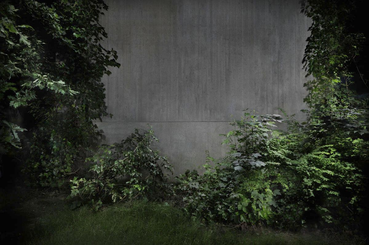Garden#5